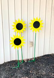 Sunflower-GS