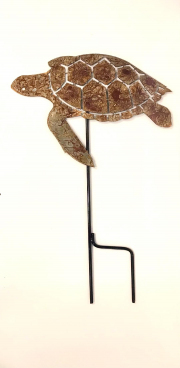 turtle-GS-rusted