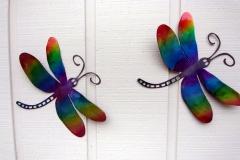 Carrico-garage---dragon-fly