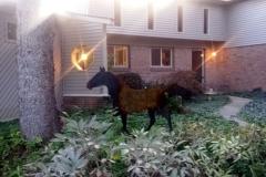 Sylvia-Anthony---6ft-Horse-