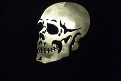 Skull---shiny