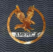 AMERICA-Eagle-Rust-and-BM