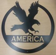 America-with-Eagle-matte-black