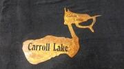 Carroll-Lake-and-Clark-Lake