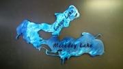 Maceday-Lotus-Lake---blue-1