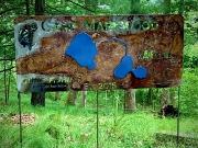 Camp-Markwood-sign-tree-background