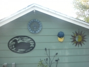 Duck-in-H2O---black-on-shed-far-away